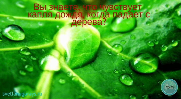 kaplya-vody