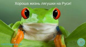 zhizn-lyagushki