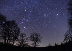 zvezdyi