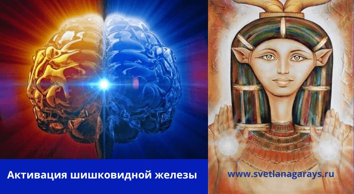 shishkovidnaya